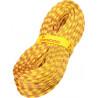 Cordes Corde Tendon Alpine/Ambition 7.9 Complete Shield dry - AlpinStore