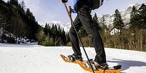 Raquettes de ski